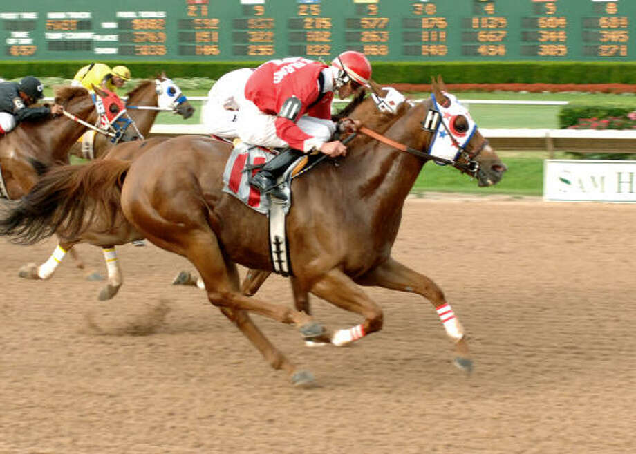Mr Step Ahead lived up to his name with a win under jockey Berkley Packer at Sam Houston Race Park. Photo: Sandra Beck, Coady Photography