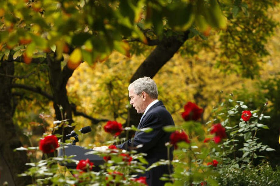 President Bush talks about President-elect Barack Obama, Nov. 5, 2008, in the Rose Garden. More garden galleries: Favorite October reader photos  | White House garden page :: chron.com/HoustonGardening Photo: Gerald Herbert, AP