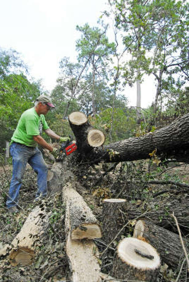 George Hawkins, director of development, uses a chainsaw to clear a fallen post at the Houston Arboretum & Nature Center on Sept. 23. Photo: Tony Bullard, For The Chronicle