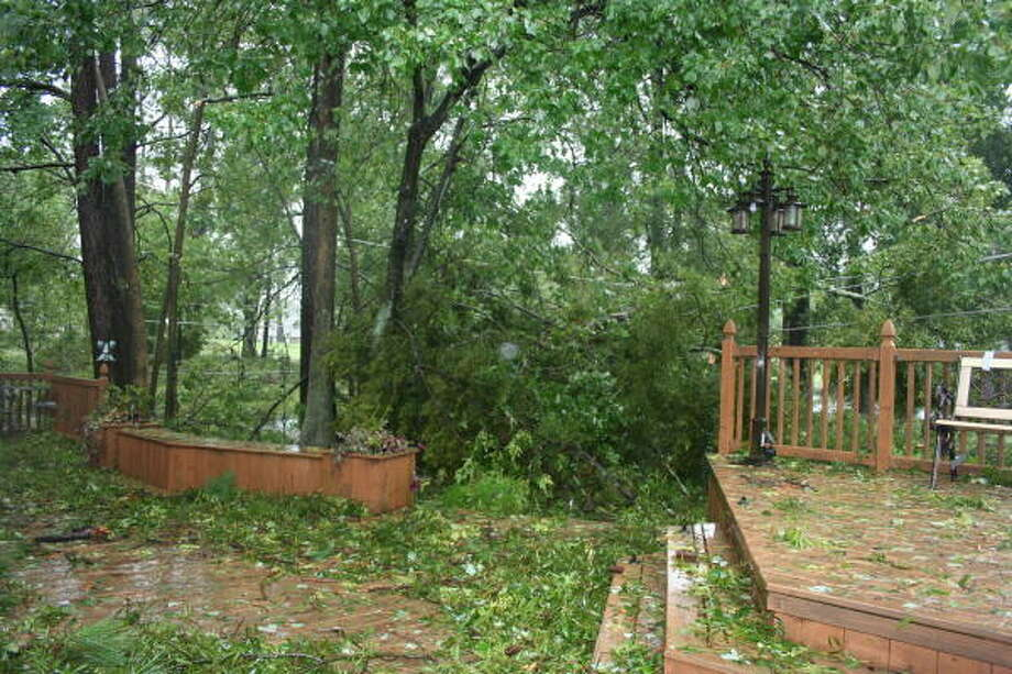A downed tree and power lines in Atascocita. Photo: Gene Haddock, Chronicle