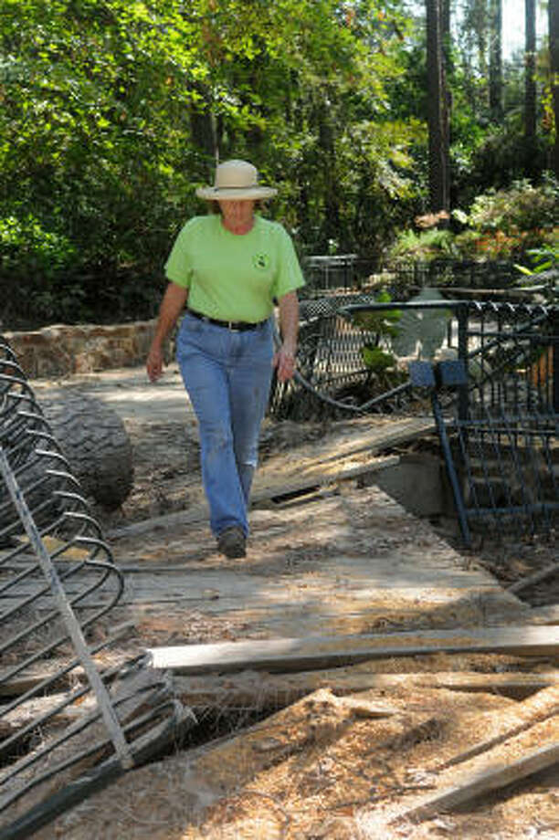 Linda Gay, Director of the Mercer Arboretum and Botanic Gardens in Spring, walks across the shade bog bridge on the garden's forest floor that was destroyed by Hurricane Ike. Photo: Jerry Baker, For The Chronicle