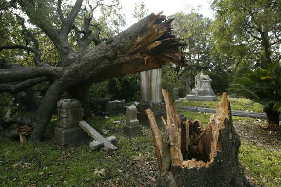A downed live oak tree rests on gravestones at Glenwood Cemetery on Washington Ave. Sept. 18. Photo: Nathan Lindstrom, For The Chronicle