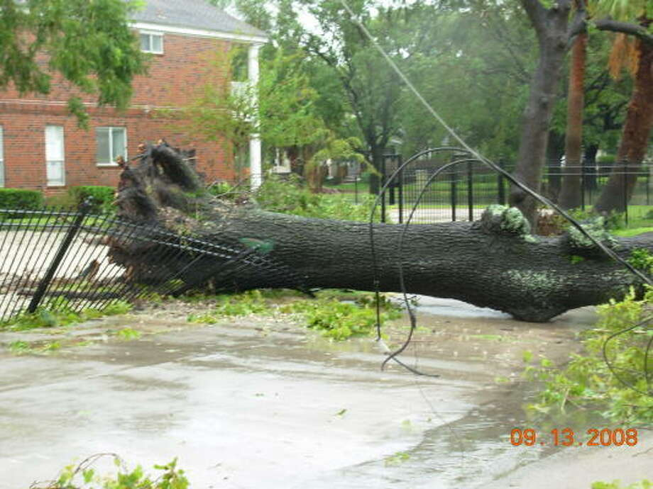 Ike's winds uprooted this tree, causing power lines to falll near Yale in Houston. Photo: Jim Newkirk, Chronicle