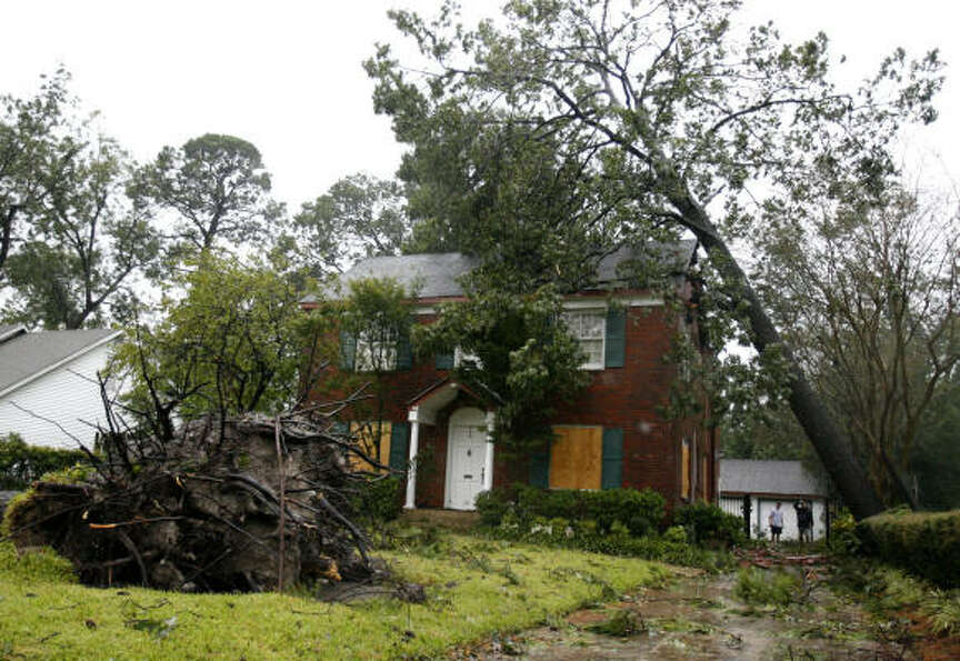 Winds from Hurricane Ike uprooted a tree in front of Thelma Elizalde's Garden Oaks home.