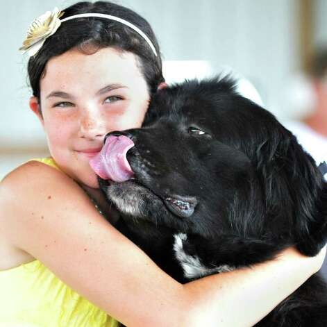 "Junior handler Leah Smisloff, 11, of Ballston Spa hugs her Newfoundland ""Andi""  during the Adirondack Spa Circuit Dog Show at the Saratoga County Fairgrounds in Ballston Spa on Wednesday, Aug. 10, 2011.   (John Carl D'Annibale / Times Union) Photo: John Carl D'Annibale / 00014106A"