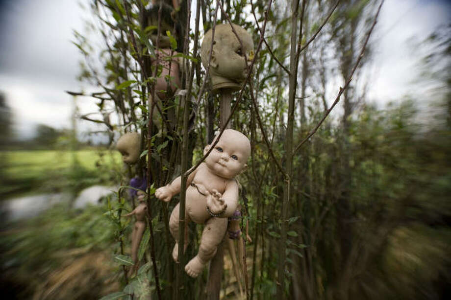Dolls hang from trees at the entrance to Doll Island, a place in the canals full of dolls the original owner used as a way to ward against the spirits he felt inhabited the area after a young girl's accidental drowning. Photo: Dario Lopez-Mills, AP