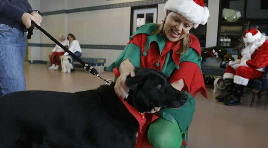 Gina Shannon, a volunteer at the Houston SPCA, hugs Athena in the lobby of the SPCA. Shannon was helping people get photos of their pets with Santa. Photo: KAREN WARREN, CHRONICLE