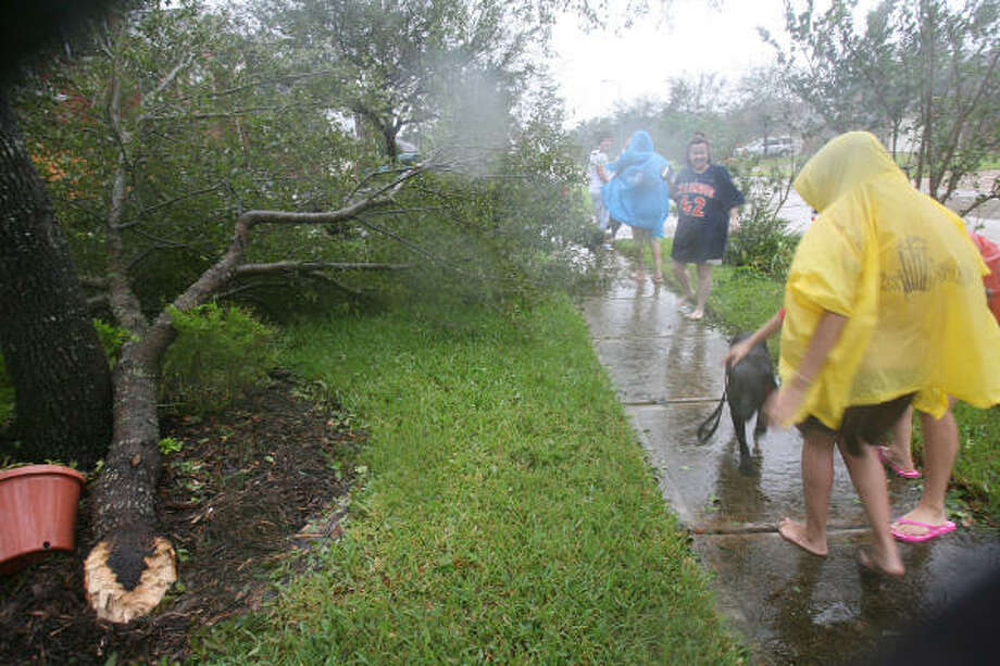 Pearland residents walk around viewing damage today, including destroyed fences and broken tree branches. Photo: Mayra Beltran, Chronicle