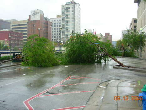Strong wind uprooted trees this morning along Prairie Street in downtown Houston. Photo: Chronicle