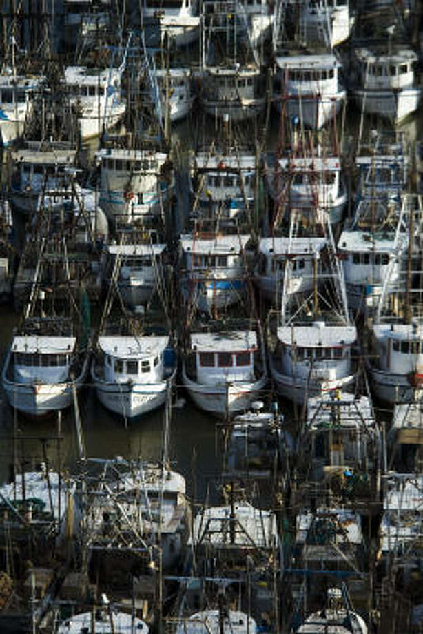 Shrimp boats are seen secured, Thursday, Sept. 11, 2008 near Texas City, Texas. Photo: Smiley N. Pool, Chronicle