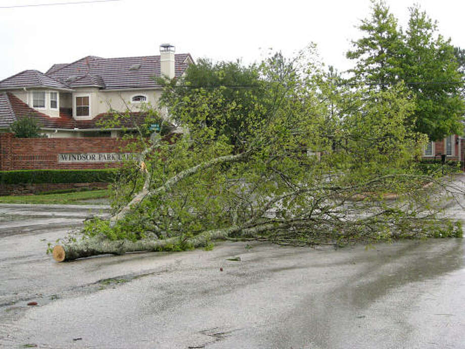 A downed tree blocks the road at Baker and Greenwind Chase in front of the Windsor Park Lakes subdivision in Katy after Hurricane Ike moved through the city early Saturday morning. Photo: Diana L. Porter, For The Chronicle