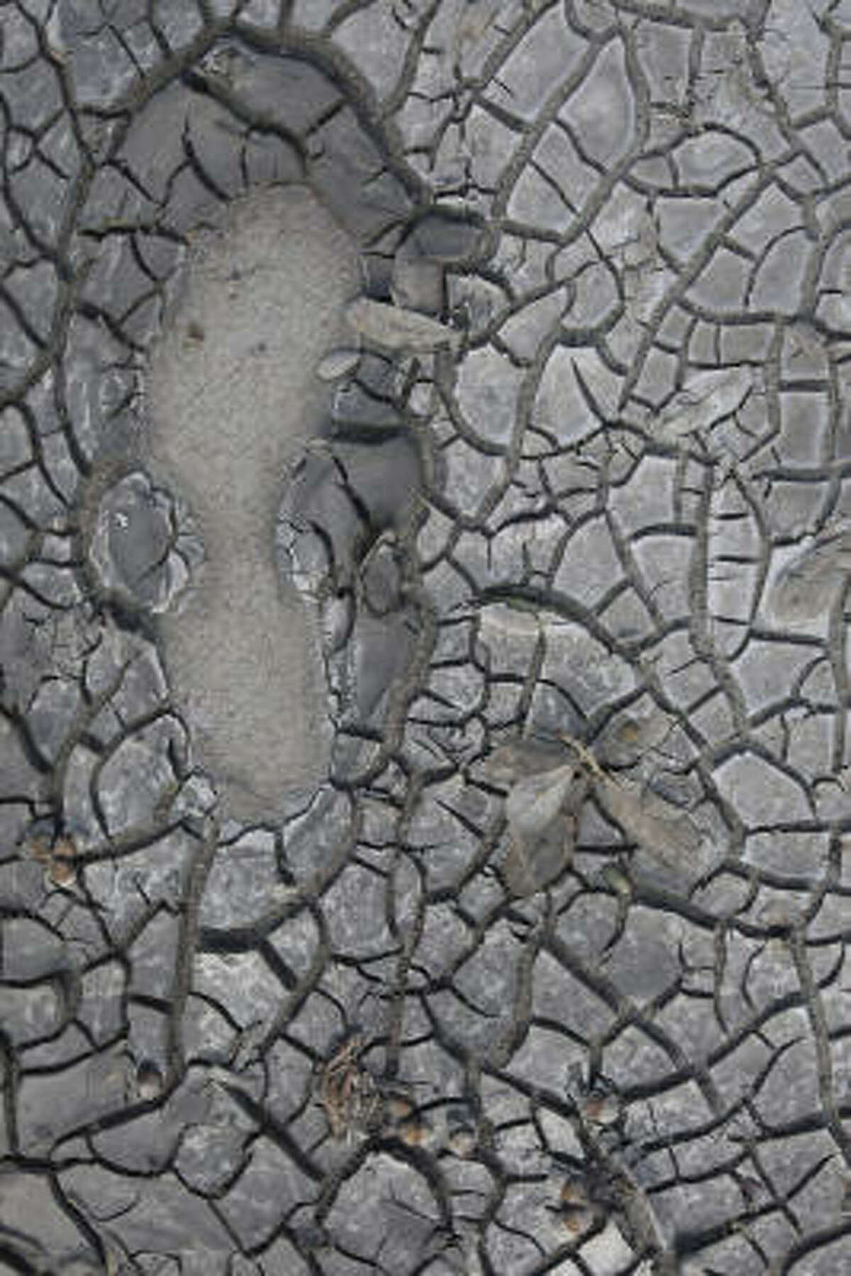 A footprint is embedded in the drying mud along sidewalk on Market Street near downtown Galveston in the aftermath of Hurricane Ike Thursday.