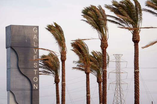 Wind from Hurricane Ike whips through palm trees on Galveston Friday. Photo: Scott Olson, Getty Images