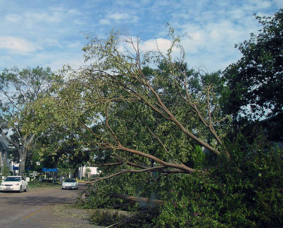 A tree blocks part of Bellefontaine Street in south central Houston. Photo: Luis Perez, Chronicle