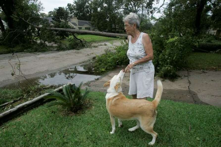 Frances Vodehnal, with her dog Reba, surveys the damage in her neighborhood in Houston where a tree