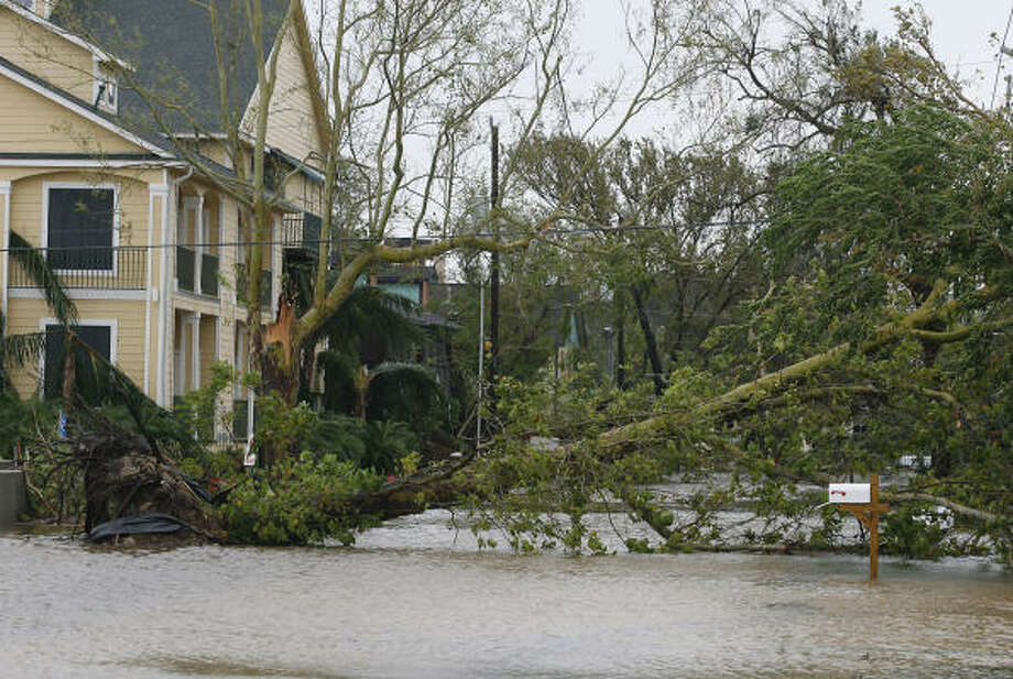 A large tree and high water left by Hurricane Ike blocks a street in Kemah. Photo: Kevin M. Cox, Galveston County Daily News