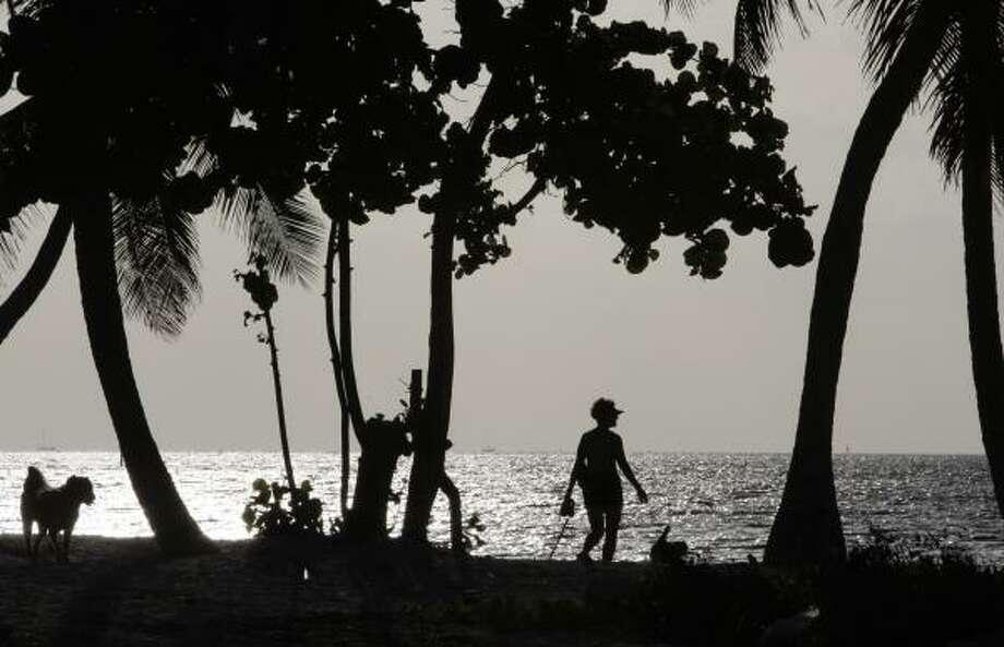 A woman walks her dogs along the beach in Key West, Fla., Sept. 8. Photo: Lynne Sladky, AP