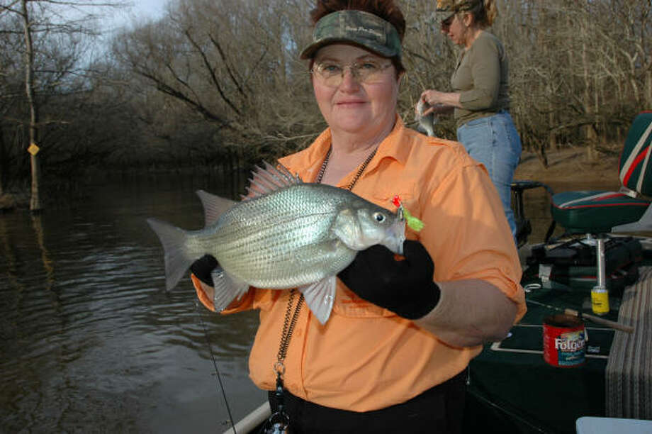 Guide Jane Gallenbach holds a hefty white bass caught in the Sabine River that pushed 3 pounds. Photo: SHANNON TOMPKINS, HOUSTON CHRONICLE