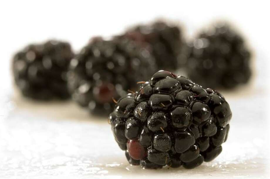 SWEET SIDE OF LIFE:Whether tossed on cereal, baked into muffins or eaten fresh hand to mouth, blackberries will grow on you. Photo: BOB FILA, CHICAGO TRIBUNE