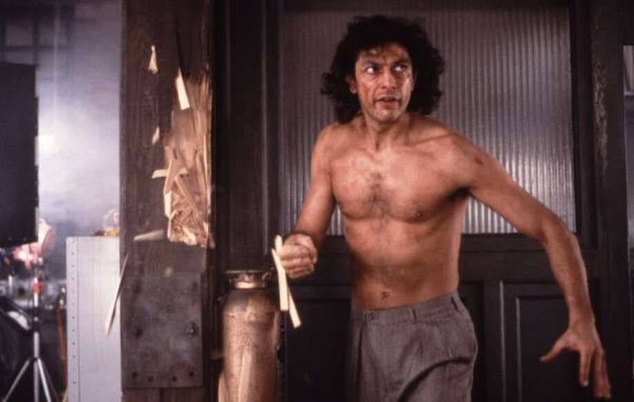 David Cronenberg's 1986 remake of the 1956 classic The Fly starred Jeff Goldblum, and the film resonated with audiences. Photo: Attila Dory, 20TH CENTURY FOX