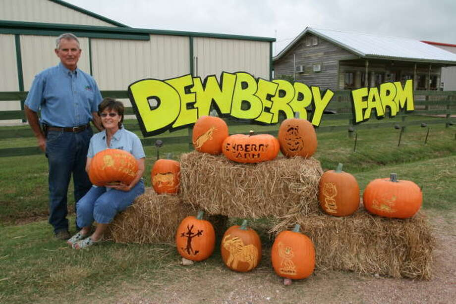 Dewberry FarmBrookshireHead to this farm for eight acres of pumpkins to pick and an eight-acre corn maze. Ride in the DewVille Express train and climb the 26-foot Slide Mountain. Open Saturdays beginning at 10 a.m. and Sundays beginning at noon. Photo: Suzanne Rehak, For The Chronicle
