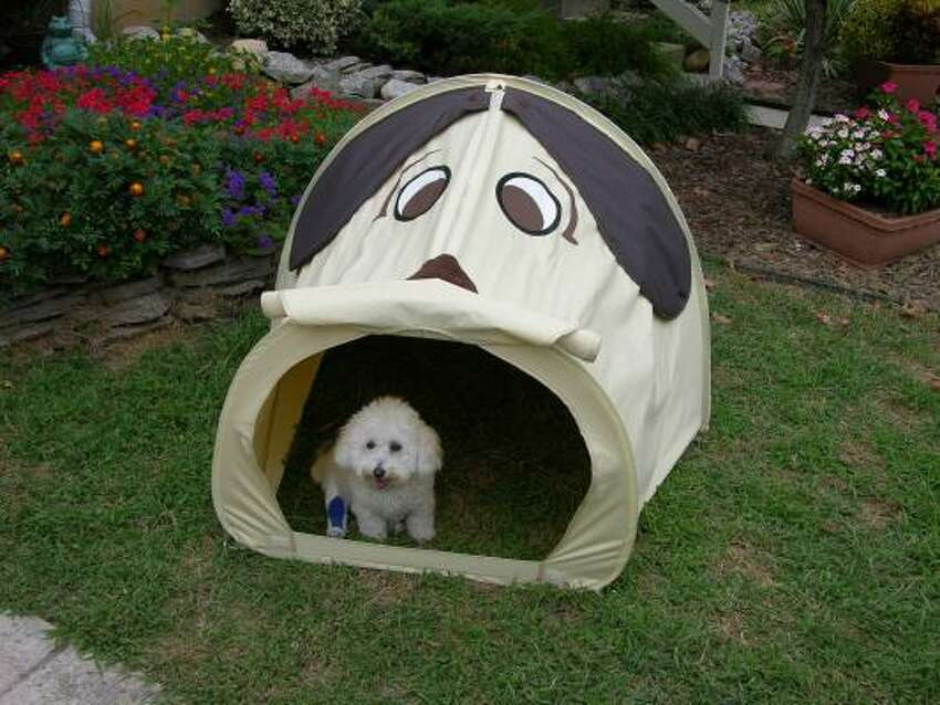 Put the Poop Tent where your dog is accustomed to going, and he walks in and does his business in dry comfort.