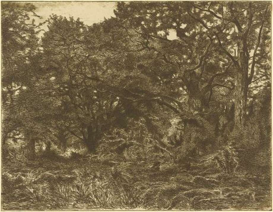 Adolpe-Andre Wacquez, French, 1814-1865 or after The Bodmer Oak at Bas Bréau Photo: MFAH