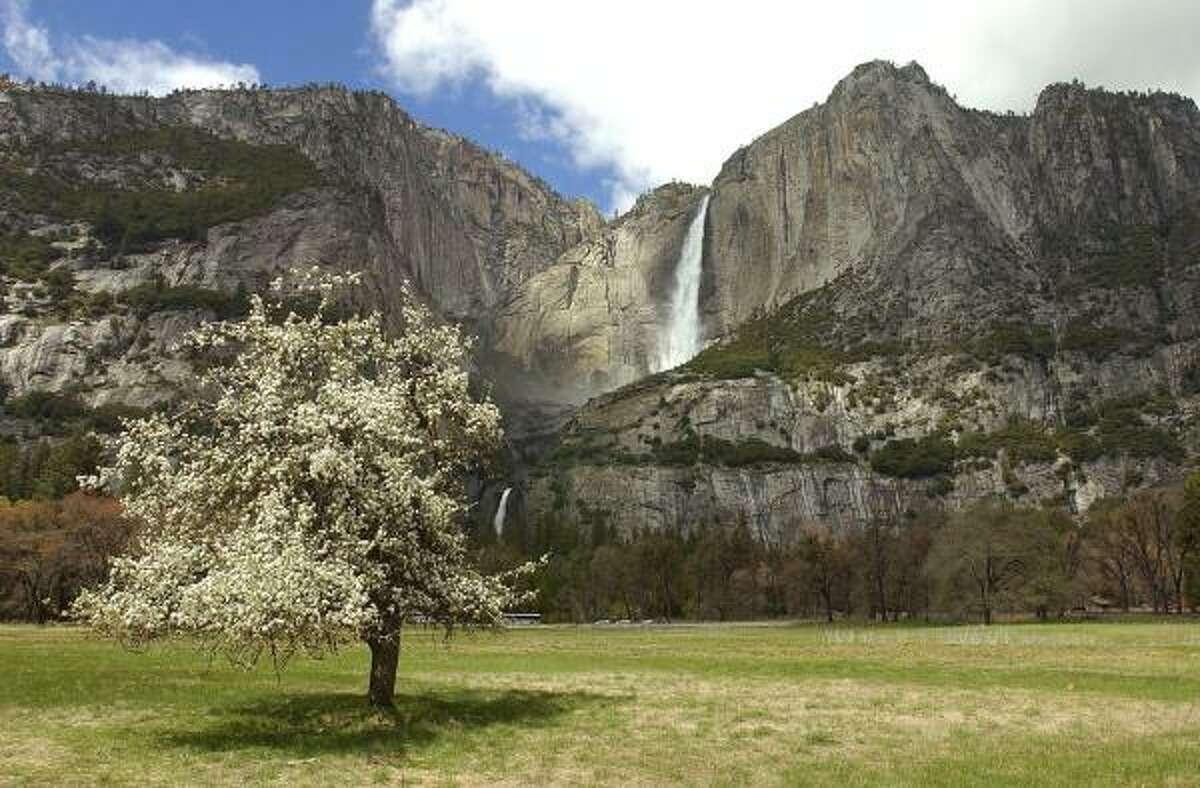 3. Yosemite: 3,503,428