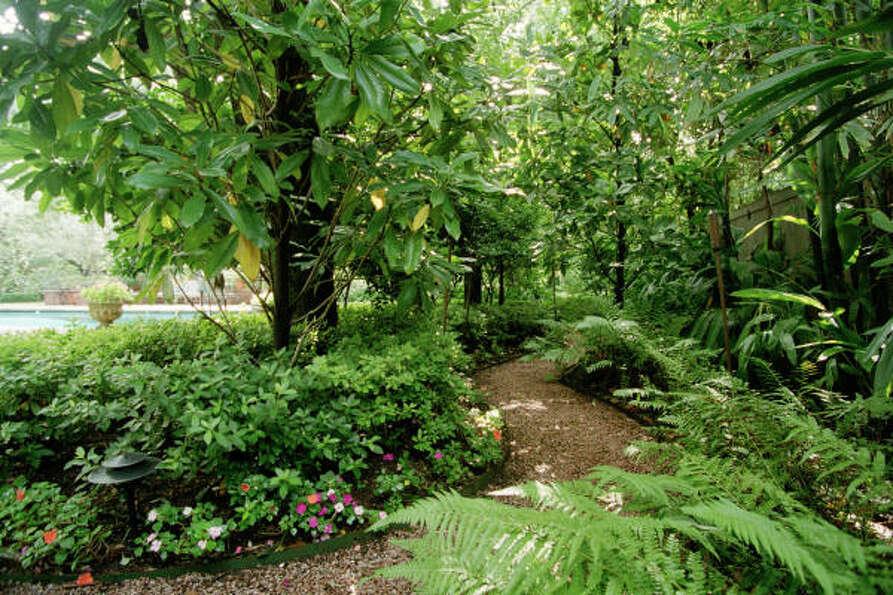 Shade garden plans photograph shade and woodland gardens for Woodland garden designs