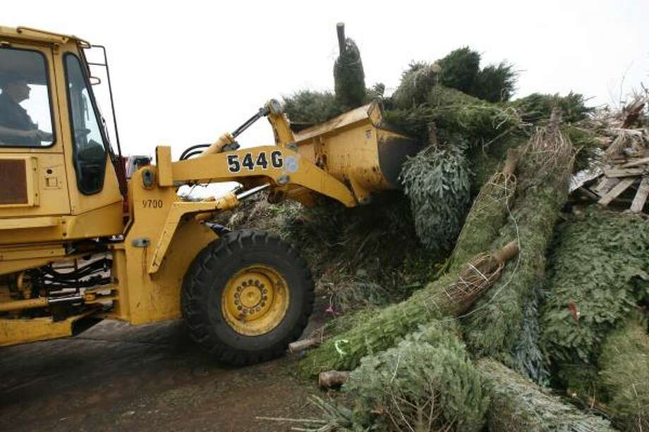 Gene Williamson of Galveston's Public Works Department uses a skip loader to move old Christmas trees Friday. Photo: Carlos Antonio Rios, Chronicle