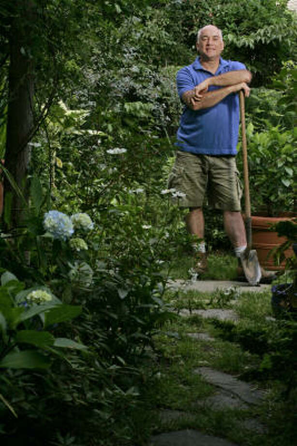 Author Stephen Scanniello surveys his garden, which has taken over his back and side yards. Photo: MICHAEL BRYANT, FOR THE CHRONICLE