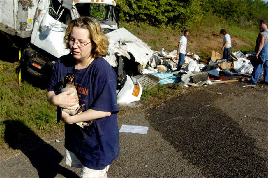 Kelly Hodge, a senior aquarist with the Indianapolis Zoo, carries a penguin after the truck overturned north of Marshall. Photo: Scott Brunne, Marshall News Messenger