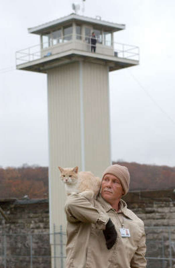 "Inmate Ricky Fulcher's shoulder makes a perch for Jeepy, one of the ""nine-lifers,"" stray cats that have taken up residence at the Eddyville, Ky., prison. Photo: DANIEL R. PATMORE, AP"