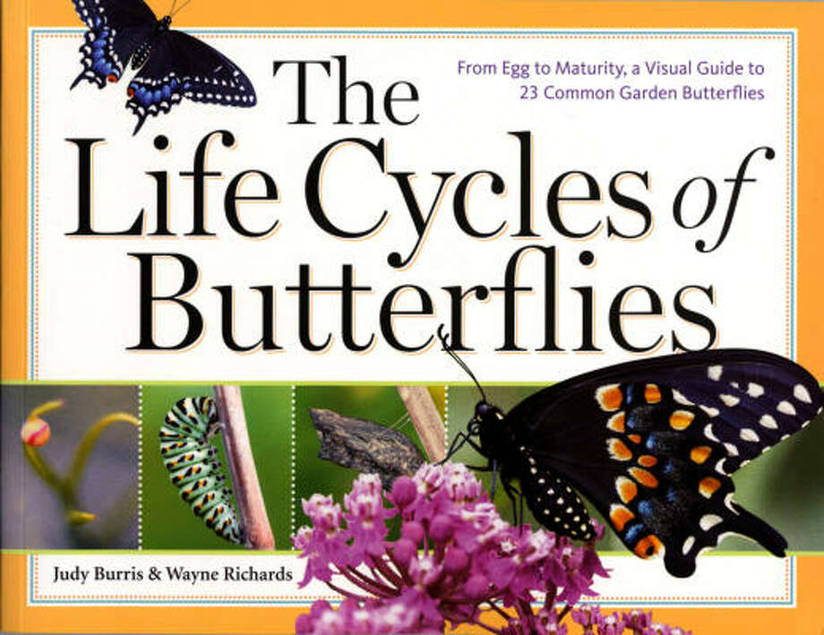 The Life Cycles of Butterflies by Judy Burris & Wayne Richards (Storey Publishing, $16.95 paperback, $26.95 hardcover). Photo: Storey Publishing