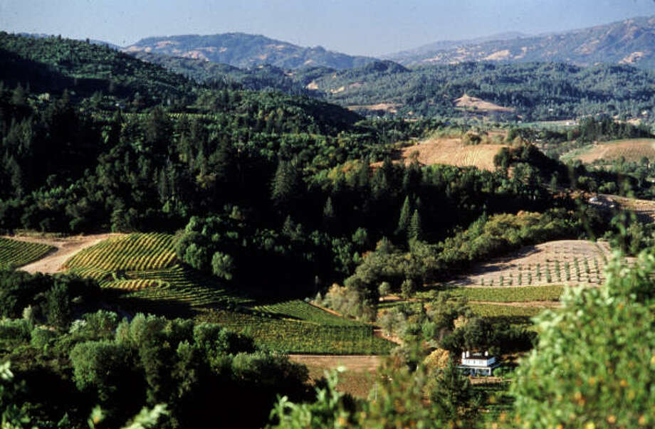 Sonoma County, Calif.'s Dry Creek Valley is home to 50-plus family-owned wineries. Photo: Dry Creek Vineyard