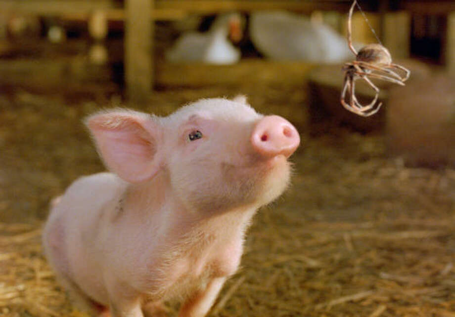 Wilbur the pig gets a new lease on life after Charlotte the spider intervenes in the live-action film Charlotte's Web. Photo: Paramount Pictures