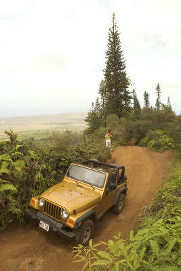 Adventure-seekers access scenic wonders by four-wheel-drive on Lanai's unpaved roads. Photo: Lanai Visitors Bureau