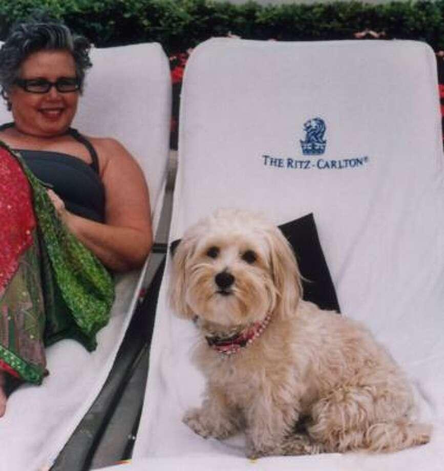 Sandra Seligman and Teddy enjoy their stay in Miami Beach. Photo: VALERIE STRAUSS, Washington Post