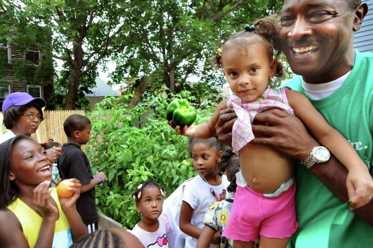 Saydee Hoke, 2, of Albany pulls a green pepper with the help of Willie White, president and founder of AVillage, at the newly dedicated children's garden on Thursday, Aug. 11, 2011, in Albany, N.Y. (Cindy Schultz / Times Union)