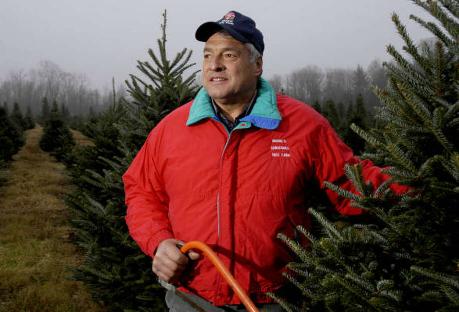 Tree farmer Richard Moore is coordinating the collection for the Christmas Tree Farmers Association of New York. He's also donating trees from his Groton, N.Y., farm. Photo: KEVIN RIVOLI, AP
