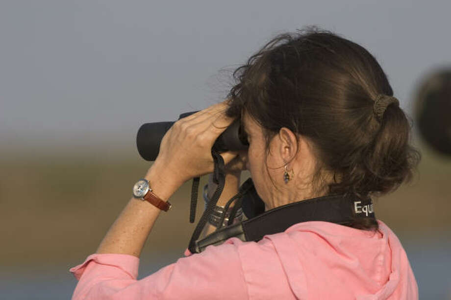 Choosing binoculars is a personal preference,and some tips can help you make the right decision. Photo: Kathy Adams Clark