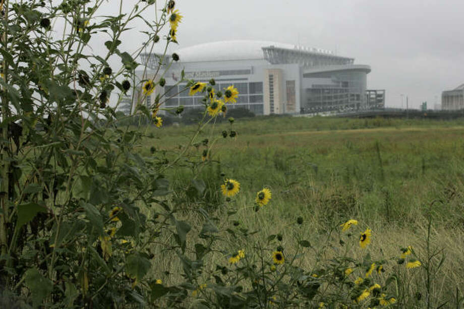 Weeds and other growth partially blocks the view of Reliant Stadium from the former site of AstroWorld. Photo: Johnny Hanson, For The Chronicle