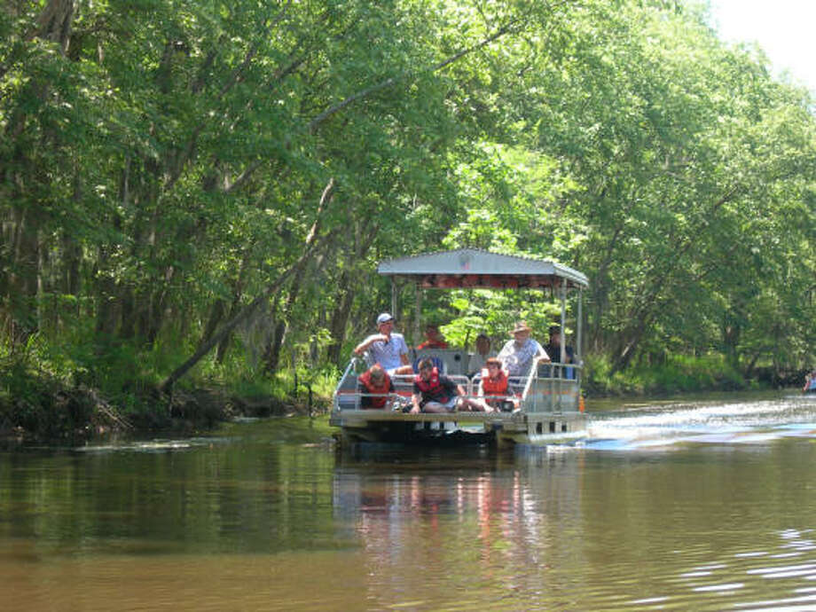Pontoon-boat tours can be arranged near the fishing pier within Caddo Lake State Park. Swamp tours are available just outside the park. Photo: Eileen McClelland, Chronicle