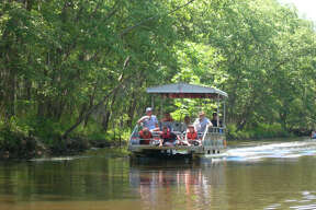 Pontoon-boat tours can be arranged near the fishing pier within Caddo Lake State Park. Swamp tours are available just outside the park.
