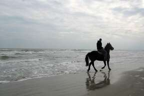 Best beach for riding horses: Hire a horse from North Padre's Mustang Riding Stables and mosey over to Padre Balli Beach for a ride along the water's edge or right into the surf. MORE INFO   MAP