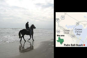 Hire a horse from North Padre's Mustang Riding Stables and mosey over to Padre Balli Beach for a ride along the water's edge or right into the surf.  MORE INFO