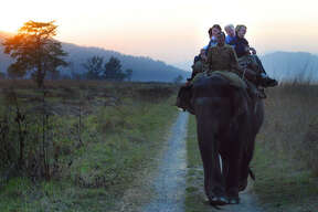 Tourists return to a forest lodge after an elephant safari in search of tigers at the Corbett National Park and Tiger Reserve.