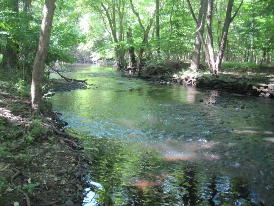 The scenic Mill River is a ribbon that links several areas where walkers can enjoy a variety of terrain and views. Photo: Contributed Photo / Fairfield Citizen contributed