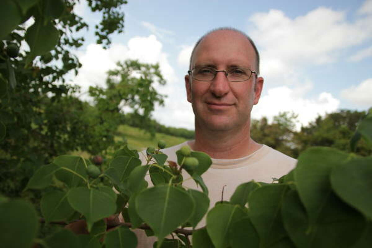 Rice professor Evan Siemann says most of the troublemaking Chinese tallow trees were brought to the U.S. in the early 1900s by federal biologists.