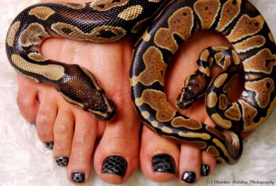 BioSculpture's snakeskin pedicure (or manicure) is created using real, shed skin applied under a gel. But you may have to go to Las Vegas to get it done. Photo: BioSculpture